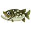 Fish pike.png