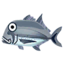 Fish rounin.png
