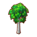 Int 2370 tree01 cmps.png
