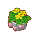 Int 2250 flower3 cmps.png