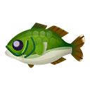 Black Bass.png