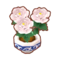 Int 3320 flower1 cmps.png