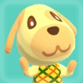 Goldie Picture.png