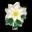 Ev flower 014 00.png