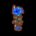 Int fst06 rose cmps.png