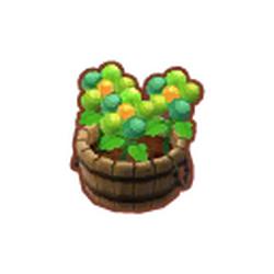 Green Berrypetals