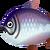 Fish kingsalmon big.png