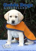 Raise Pup 4