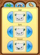 Bearfeatures3