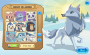 Arctic Wolf in 'Choose an Animal'
