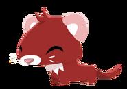 Ferret