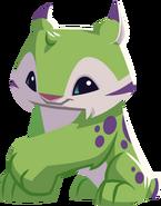 Green lynx