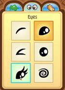 Pet Hedgehog eyes