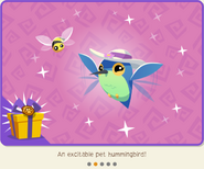 GardenEscapeBundle PetHummingbird