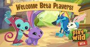 Play-Wild Beta-1