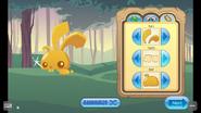 Pet-Golden-Bunny Features 1