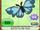 Butterfly Hair Bow