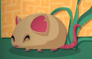Owl-Minibook Pet-Mouse-1