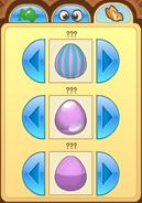 Pet-Egg Features-3