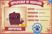 Pet Magenta Seal Certificate