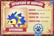 Pet hedgehog certificate