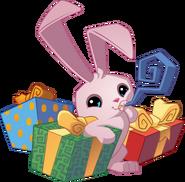 Bunny celebrating