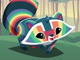 Rainbow Raccoon