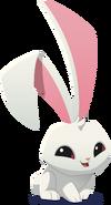 Renovated art bunny