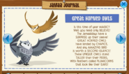 Great horned owls release jamaa journal