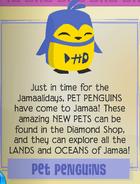 Jamaa Journal Pet Penguins