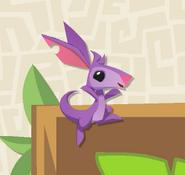 Kangaroo-Minibook Pet-Joey-1