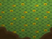 Enchanted-Hollow Grass-Carpet