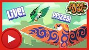 Fearsome Falcons, Nonmember Den and Glitched Rings Live Stream! Animal Jam