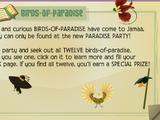 Paradise Party