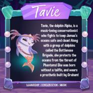 TavieInformation-DailyExplorer