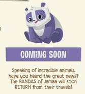 Jamaa Journal Panda Coming Soon