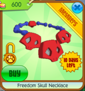 Freedom skull necklace larger