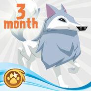 ArcticWolf AnimalJam Retail Gift Card