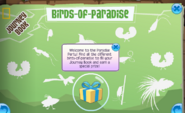 Paradiseintro