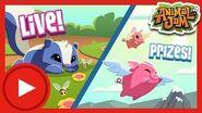 Scent-imental Flying Pig Stream! Animal Jam & Play Wild