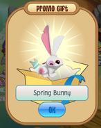 Recieving a spring bunny