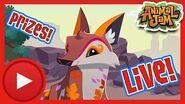 Snazzy Animal Jam Live Stream! Animal Jam & Play Wild