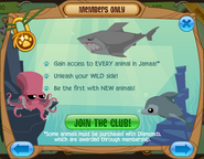 Members-Only-Ad Animals-Ocean
