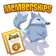 Membership-DailyExplorer