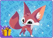 Fennec Fox bundle 1