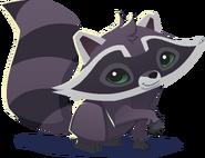 Renovated art raccoon