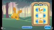 Pet-Golden-Bunny Features 4