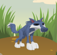 A Wolf When First Created