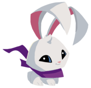 Bunny homepage