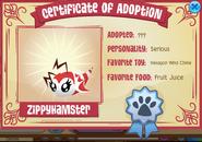 Pet bee certificate